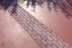 star dust w paver